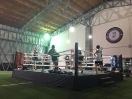 In the ring...