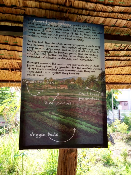 About Pun Pun Farm