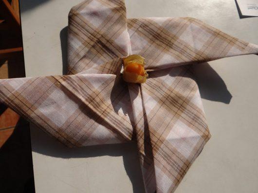 Pinwheel with a gooseberry