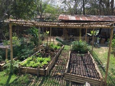 Gardens at Bann Kang Wat