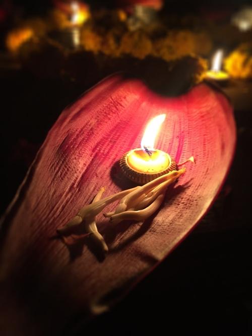 Banna Leaf Light Boat