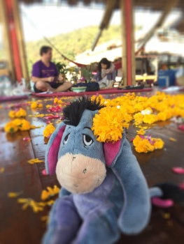 Eeyore at the Mandala